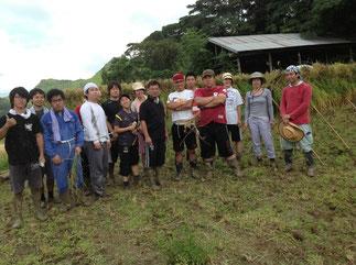 稲刈り体験会を実施