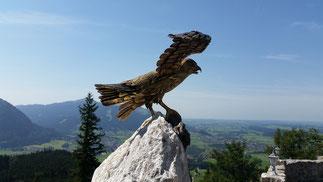 Oh Gott - jetzt verfolgt mich noch der Falke...