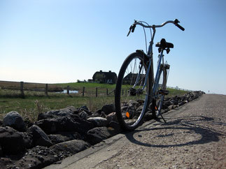 Radfahren, Inlineskaten, Surfen, Kiten. Auch für Sport ist Hallig Hooge mit der salzhaltigen Luft bestens geeignet!