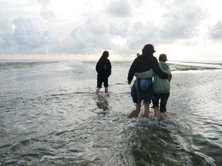 Wattwanderungen starten direkt am Deichabgang Volkertswarft. Von dort aus könnt Ihr zur Sandinsel Japsand laufen.
