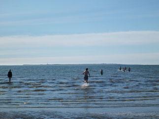 Nur 2 Gehminuten entfernt von Volkertswarft könnt Ihr in der Nordsee baden.
