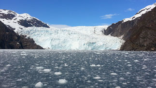 Harding Icefield, Quelle: Wikipedia