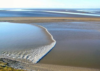 Tidal bore (or tide wave).