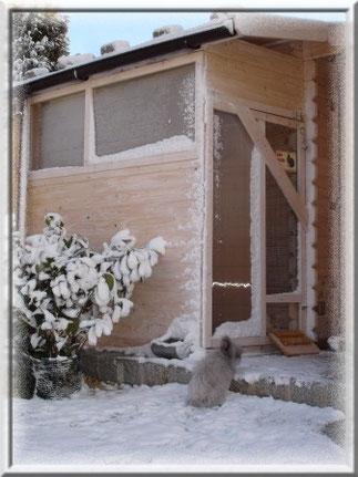 Im Winter wird das überdachte Außengehege mit Plexiglasscheiben wetterfest gemacht. Somit haben es die Teddys auch bei Regen, Schnee und Wind gemütlich