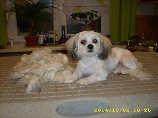 Ella wurde gebadet und bekam ihren ersten Haarschnitt