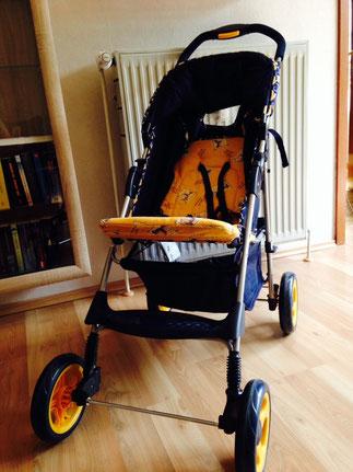 Kinderwagen (Buggy)