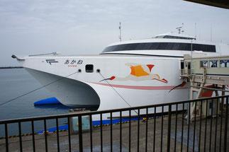 佐渡のシンボルである「トキ」が日本海に舞います!