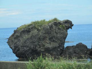 こちらは「トットコ岩」。形が鶏に似ていることから名付けられました