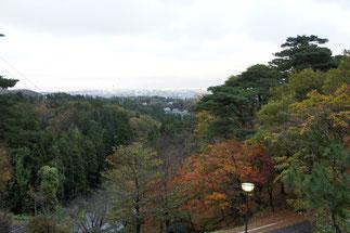 今日の春日山城跡からの景色。夏以来の訪問。気がつけば晩秋のとき