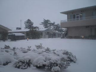 時折、地吹雪が舞う中庭。暖かい天候から一転、真冬に逆戻り