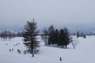 黄色いゼッケンを付けた子どもたちが、雪原を駆け抜けていきました