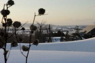 雪に包まれた頸城平野。穏やかな日曜日