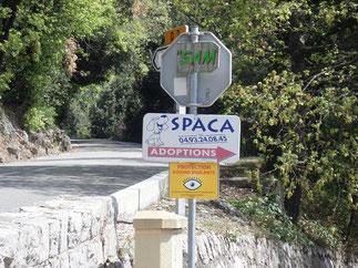 Le chemin du Riou est celui qui mène au refuge SPACA dont la pancarte est bien vivible de la route.