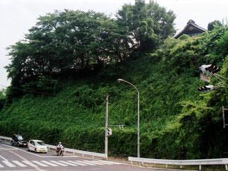夏の深緑 (群馬県内)