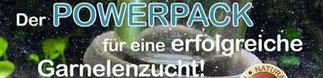 http://www.wirbellosenzucht-wolfinger.de/garnelen-shop/wasserstabilisatoren/