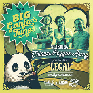 cancion marihuana legal, big ganja tunes 2016, talawa reggae army