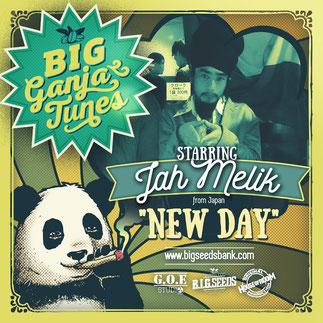 jah melik, big ganja tunes reggae 2016, big seeds