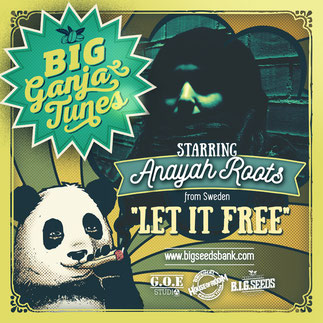 let it free Anayah roots big ganja tunes 2016