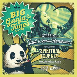 spiritual jorney alerta kamarada, big ganja tunes reggae compilation 2016