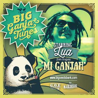 Mmi ganja lua uruguay big ganja tunes 2016