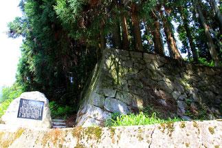 紫蓋寺跡の石段(この石段を登り約5分で念誦崛があります)