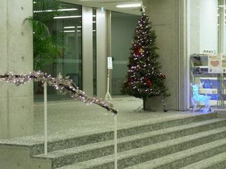 クリスマスイルミネーション 取付施工事例 東京都文京区 東洋学園大学様 横浜スイートクリスマスカンパニー