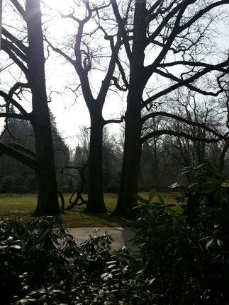 Park als Oase der Ruhe