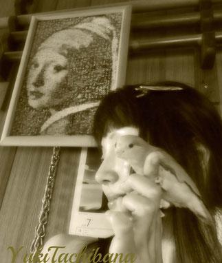相棒の『マメルリハ』あおい。 あおいの風切り羽を和紙と一緒にコラージュすることに挑戦。 写真は私とあおいとのコラージュ。YukiTachibana 立花雪