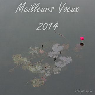 © Olivier Philippot Photo - Des échanges et des hommes - Blog - News - Meilleurs Voeux 2014