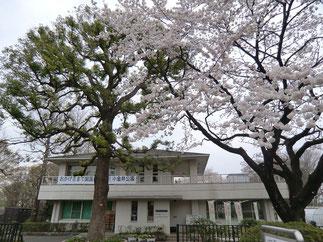 ●小金井公園サービスセンター