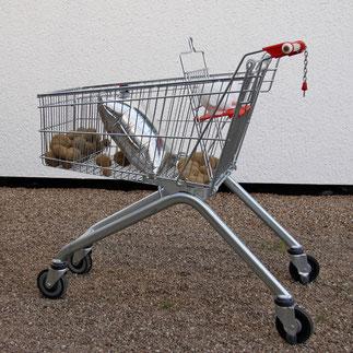 einkaufswagen mit vorratsbabys