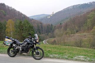 Vor der Burgruine Thernberg