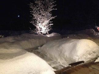 雪のミニ回廊?