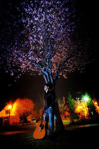 日本 北海道 夜桜にて佇む 妖