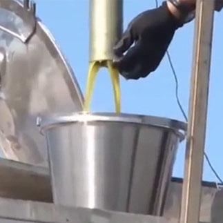 Olivenölbetrug mit Hilfe der EU.
