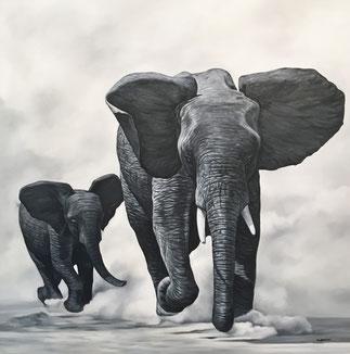 Schöne Elefanten Bilder