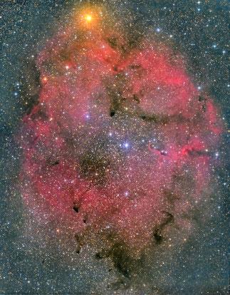 NGC1396