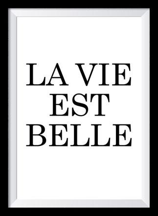 Typografie Poster Inspiration, la vie est belle
