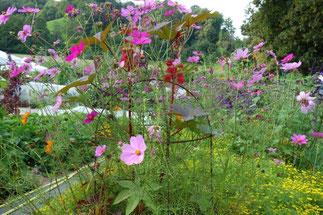 Gartenkurs im Liebegger Garten