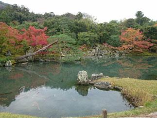 Autumn leaves of Tenryu-ji temple
