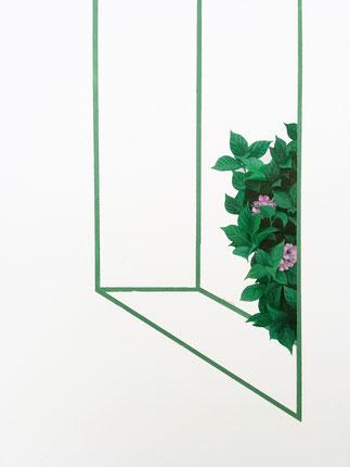 hortensie plant flower green pink lines architecture