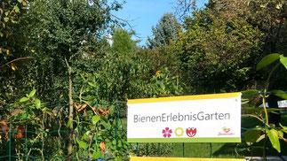 Bienenretter Bienenerlebnisgarten Lernort Bildung für nachhaltige Entwicklung Frankfurt