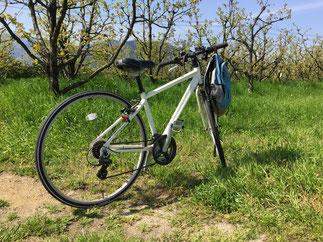 通勤用クロスバイク Crossbike
