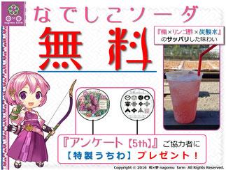 アンケート協力POP 和×夢 nagomu farm