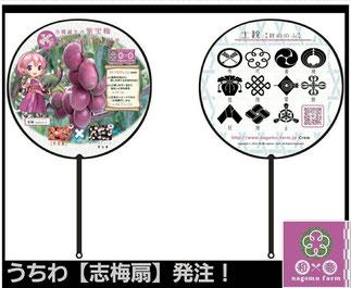 特製うちわ【志梅扇】 『なでしこソーダ』購入者無料配布 和×夢 nagomu farm
