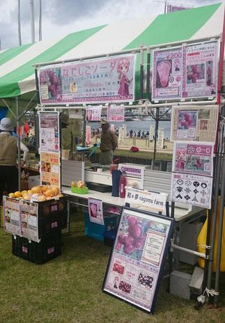 ケンケン鰹祭り2016 和×夢 nagomu farm 店舗全体図