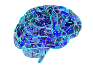 脳の病気は体全体に影響を及ぼす。