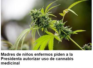 ponte en mis zapatos campaña para la regulacion del cannabis medicinal