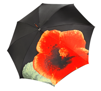 Stockschirm Blumenmotiv