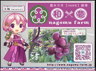和×夢 nagomu farm 紹介pop 2016
